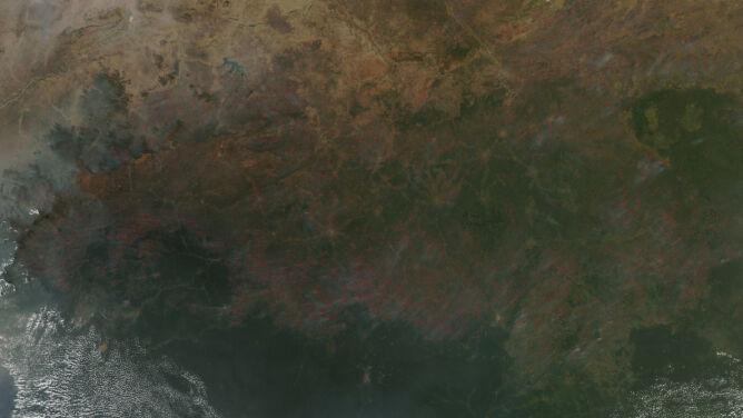 Afryka Środkowa w ogniu