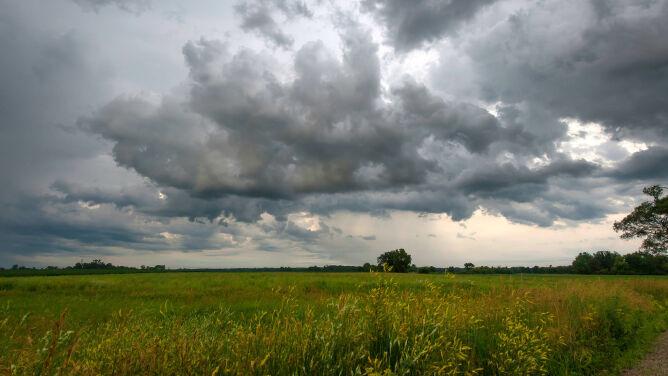 Prognoza pogody na dziś: przelotny deszcz. Miejscami zaświeci słońce