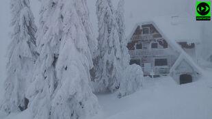 """Krytycznie trudne warunki w Beskidach. """"Oklejone śniegiem drzewa łamią się jak zapałki"""""""