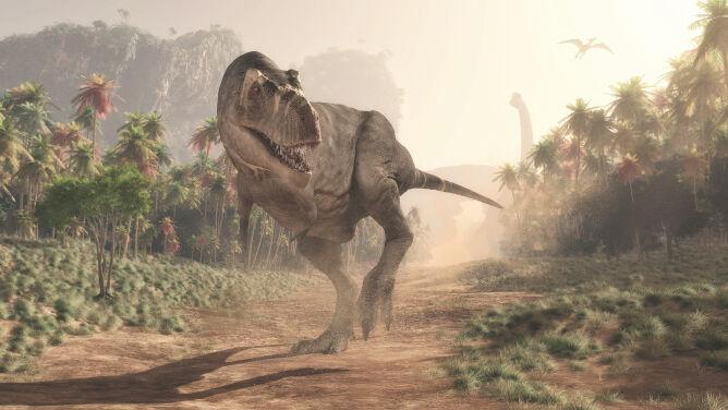 Tyranozaury jak wilki. Mogły polować w stadzie