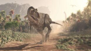 Ile tyranozaurów mogło chodzić po świecie? Ta liczba robi wrażenie